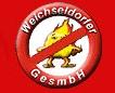 Logo Peter Fritz  Weichseldorfer GmbH