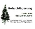 Logo Holzschlägerung David Auer