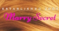 Logo Marry Secret