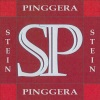 Logo: Steinmetz Pinggera