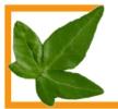 Logo Ihr Gartengestalter  Dipl.-Ing. Christopher Wopalensky
