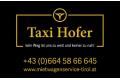 Logo Taxi Hofer