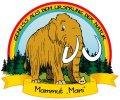 Logo Manfred Sieberer  Vieh - Fleisch - Wurst