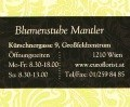 Logo Blumenstube Mantler