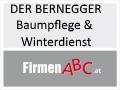 Logo: DER BERNEGGER - Baumpflege & Winterdienst  Inh. Ing. Gerhard Bernegger