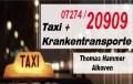 Logo Taxi Hammer