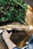 2. Bild / Naturkaffee