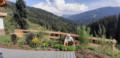 2. Bild / Der Garten Dave