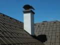 3. Bild / Dach-King  Roman Schweiger