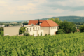 2. Bild / Wein-Gut Hutter  Restaurant und Hotel