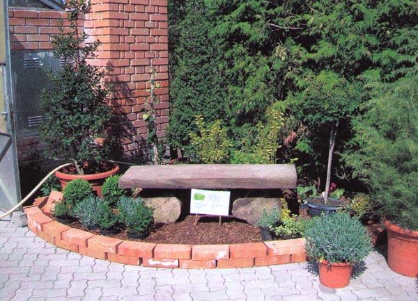 Gartengestaltung stefan stremnitzer ladendorf nieder sterreich - Gartengestaltung app ...