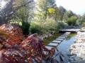 1. Bild / Projekt Garten Ltd