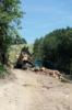 1. Bild / MAURER Holzschlägerungen & Bringung
