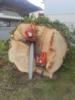 3. Bild / Kammerhuber Holzschlägerung