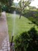 3. Bild / Bewässerungssysteme & Gartenservice Markus Stabelhofer