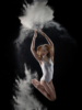1. Bild / abcDance Academy of Ballet & Contemporary Dance
