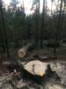 3. Bild / Forstunternehmen und Holzhandel  Sturm Thomas Franz