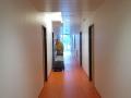 2. Bild / Roman Hofmann Service für Haus, Garten u. Gebäudereinigung e.U.