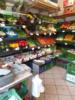 2. Bild / Obst und Gemüse Cvetic Dejan