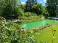 1. Bild / Gartenlöwe Gartenbau + Gartenpflege