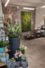 2. Bild / Gartengestaltung & Floristik Blumen Tauber GmbH