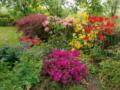 2. Bild / Garten Matula OG