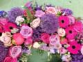 3. Bild / Blumen Wurm