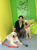 1. Bild / Dogs haircut by sibylle