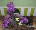 3. Bild / Blumen Lang