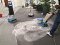 1. Bild / SCS sortir cleaning services GmbH