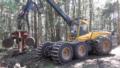 3. Bild / Holz Berner GmbH