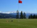 2. Bild / Styrian Mountain Golf Mariahof