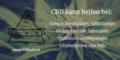 3. Bild / CBDbuds GmbH