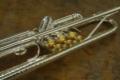 3. Bild / Haagston Brassego-Musikinstrumente
