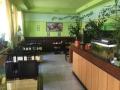 1. Bild / Asia Restaurant  Flugfisch