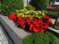 2. Bild / Grabpflege-Grabgestaltung Gaugl Eva
