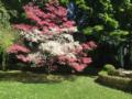 2. Bild / Prima Verde Gartengestaltung  Inh. Peter Dimany