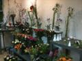 2. Bild / Blumen- und Friedhofsgärtnerei  Bernhard Neuner
