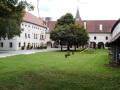 1. Bild / Gasthaus Stifterwirt  Duller Siegfried