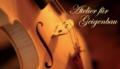 2. Bild / Atelier für Geigenbau  Peter Ivan