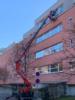 3. Bild / Gebäudereinigung Miomir Prcaic
