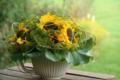 3. Bild / Dieterle Home Interieur - Blumen - Event - Deko