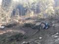 3. Bild / Holzschlägerung Windpeßl OG Forstservice – Holzbringungen – landwirtschaftliche Dienstleistungen